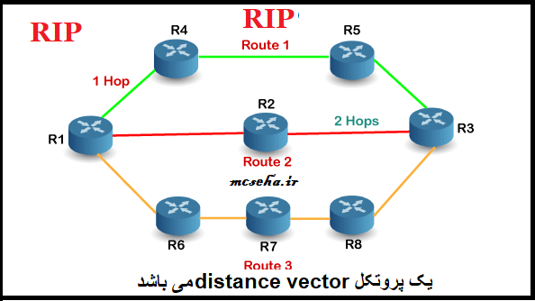 rip protocol-